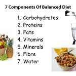 What are the 7 Components Of Balanced Diet ?